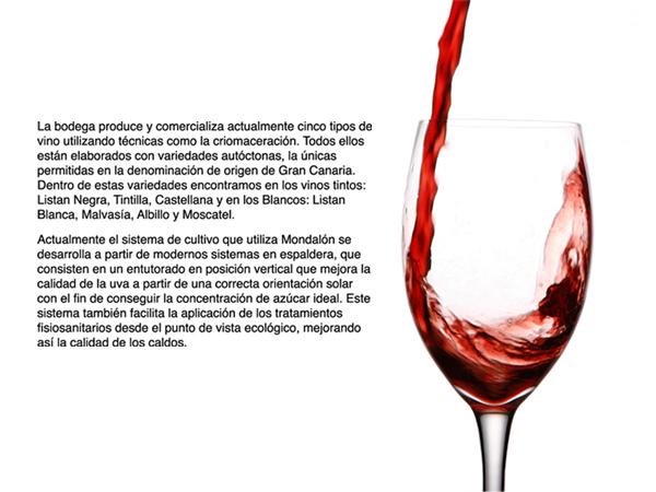 vinos-de-gran-canaria-bodega-mondalon
