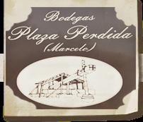 Logo Plaza Perdida
