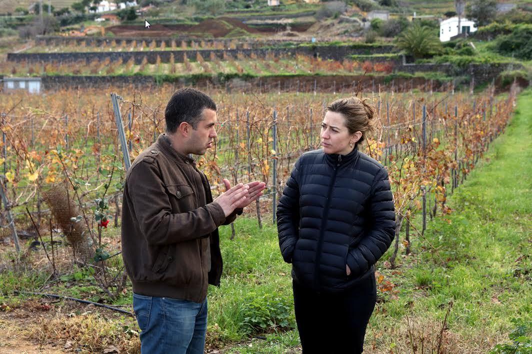 vinos-de-gran-canaria-nadia-fournier-1