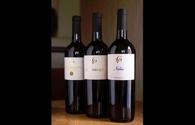 vinos-de-gran-canaria-vegadegaldar-masmediacanarias-18