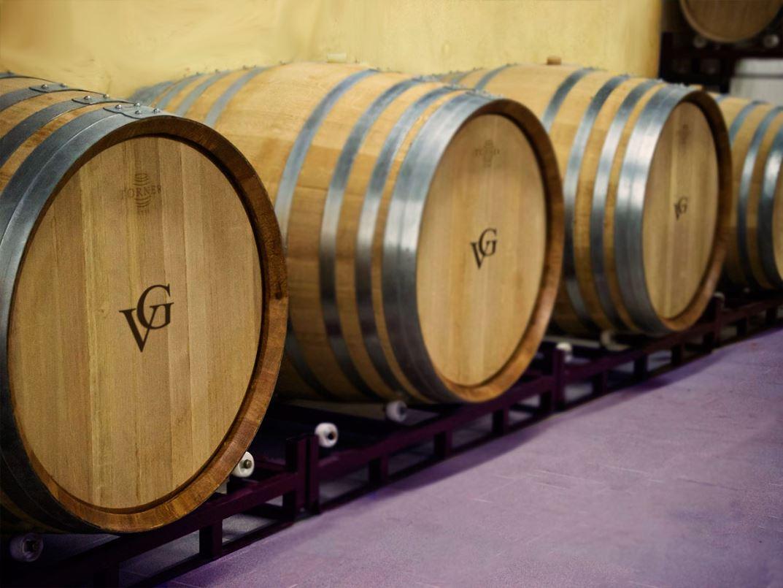 vinos-de-gran-canaria-vegadegaldar-masmediacanarias-24
