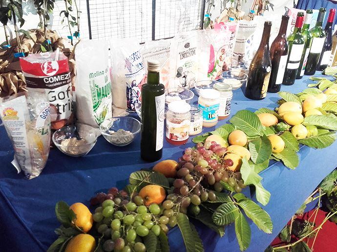 vinos-de-gran-canaria-saboreagaete-11