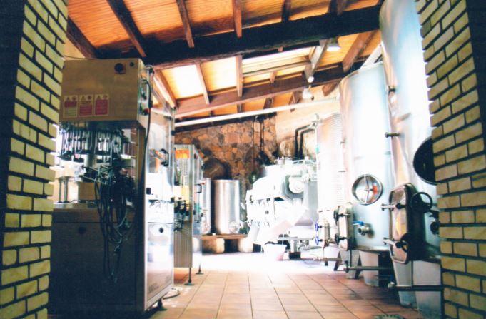 vinos-de-gran-canaria-bodegas-montealto-26