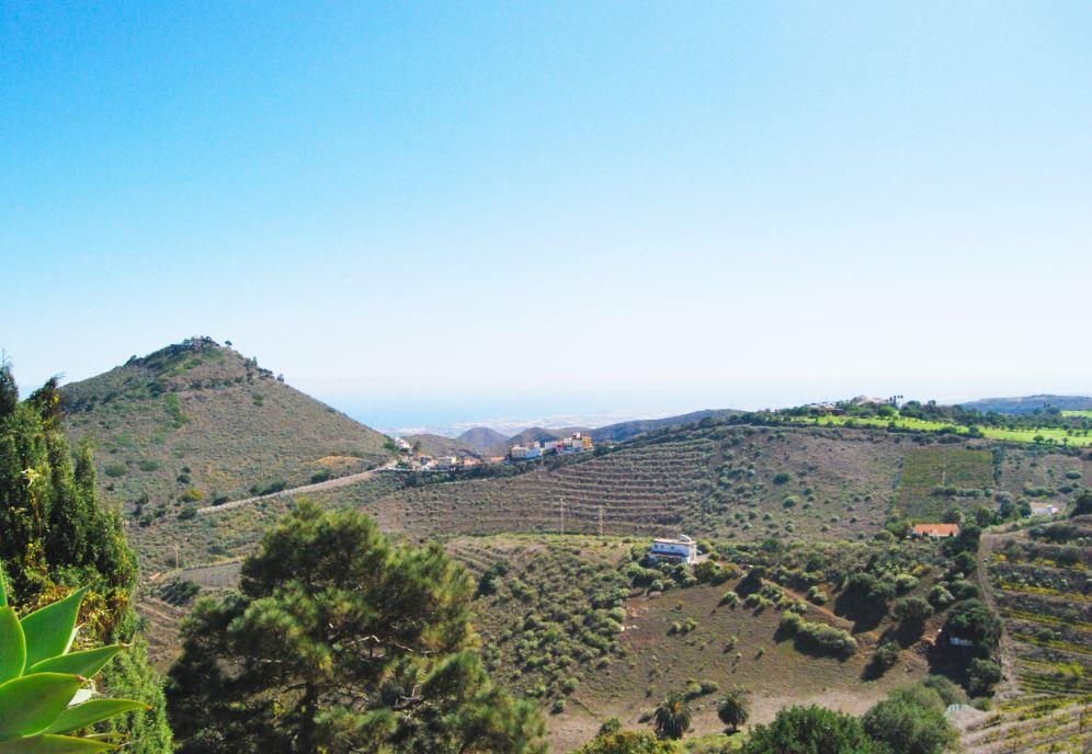 vinos-de-gran-canaria-bodegas-montealto-9