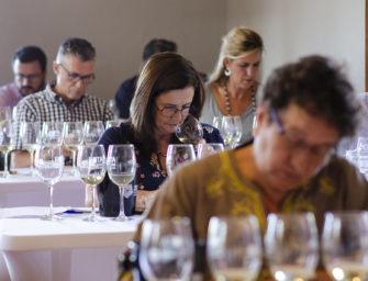 La Cata Insular de Vinos de Gran Canaria celebra su vigésimo cuarta edición