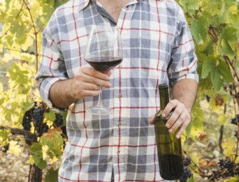 La DO Vinos de Gran Canaria finaliza el año con uvas de una calidad extraordinaria