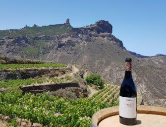 El vino Agala 1212 obtiene una Gran Medalla de Oro en Agrocanarias 2020