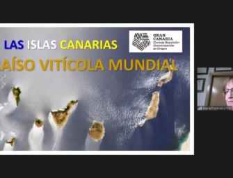 El Consejo Regulador de Vinos de Gran Canaria celebra un curso sobre los varietales de uva canarios