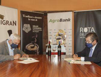 La DO Gran Canaria firma un convenio con CaixaBank que incluye amplias ventajas para las bodegas